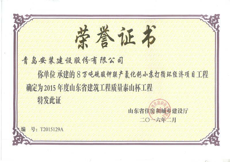 15年泰山杯-8万吨年硫酸钾联产氯化钙小苏打循环经济项目
